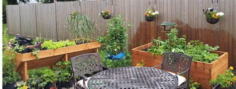 How To Grow Vegetables In Containersgreenside Up How To Grow A Vegetable Garden In Pots