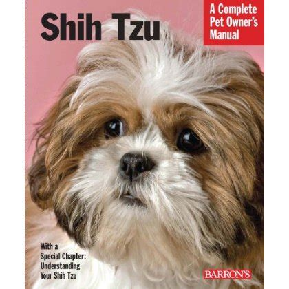how to care shih tzu how to care for your shih tzu puppy that puppy in the window part 7
