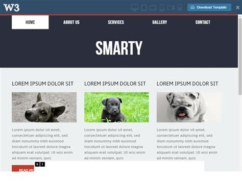 pet website templates free and premium free website