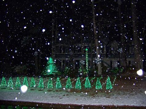 photo gallery burton christmas lights