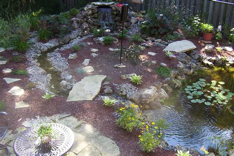 pond backyard 5 most inspiring backyard ponds sweeney feeders