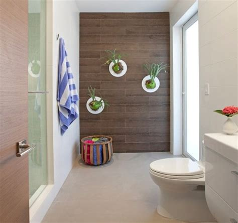 Indoor Plants Bathroom by 10 Beautiful Indoor House Plants Ideas