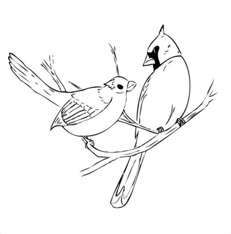 free coloring pages of red cardinal