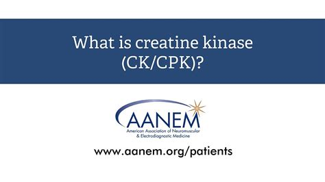 creatine kinase elevated what causes high creatine kinase levels mccnsulting web
