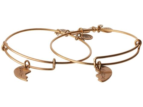 alex and ani best friends set of 2 charm bangle in