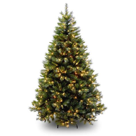 picture of christmas tree real christmas tree clipart clipart suggest