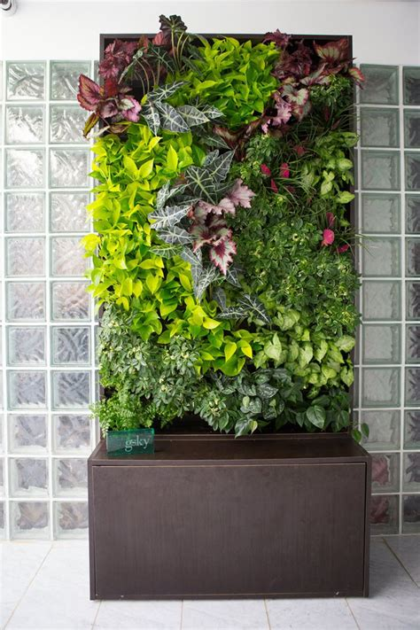 121 best vertical gardening images on pinterest