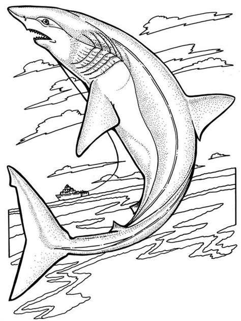 whale shark coloring page free printable shark coloring pages for