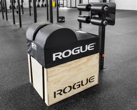 rogue echo ghd rogue fitness