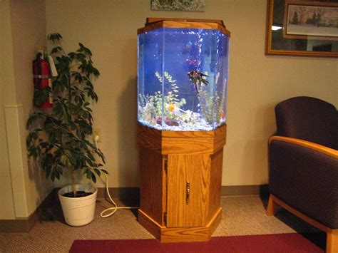 Related Keywords Suggestions For Hexagon - related keywords suggestions for hexagon aquariums