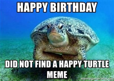 Turtle Meme - disappointed turtle meme