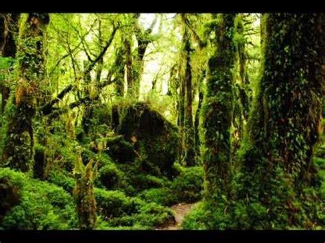 imagenes naturales de chile paisajes de chile mejores fotos 2011 youtube