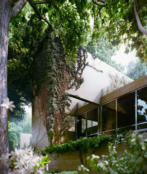 forest house design wonderful modern forest house design with solid building elements designforlife s