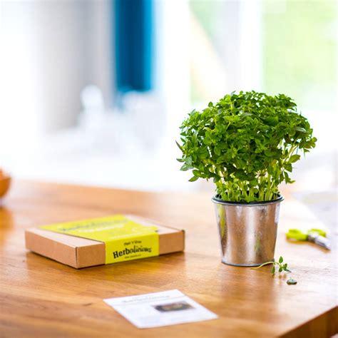 herb growing kit  plant  grow notonthehighstreetcom