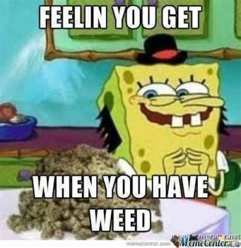 Spongebob Weed Memes - 240 best 420 memes images on pinterest