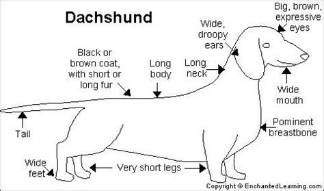 louisiana map enchanted learning dachshund printout enchantedlearning