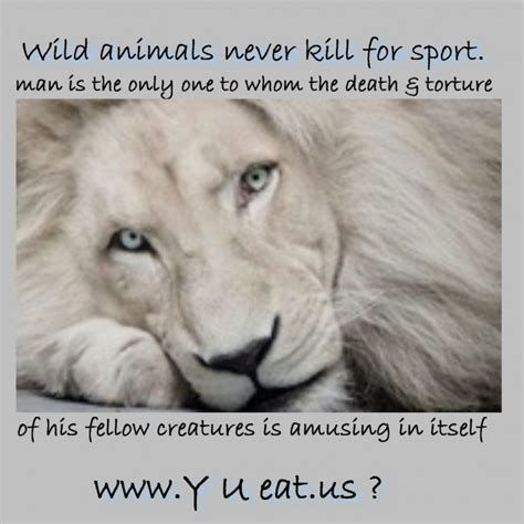 animal quotes animal quotes animal does not kill the animal for