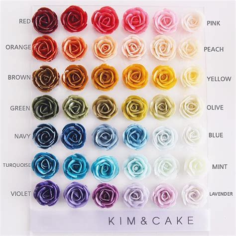 buttercream color best 25 cupcake ideas on frosting