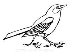 Heimische Vögel Im Winter 4708 by Ausmalbilder V 195 182 Gel V 195 182 Gel Tiere Sachthemen Hus