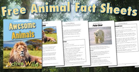 printable animal fact cards free awesome animals book for all active wild readers