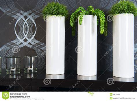 vasi alti bianchi piante verdi in vasi alti immagine stock immagine 29145081