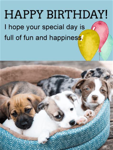 birthday puppies puppies animal birthday card birthday greeting cards by davia