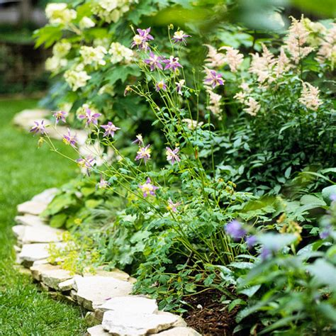 Ideas For Garden Edging Borders Ideas For Garden Borders And Edging