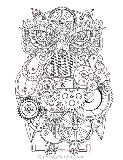 owl coloring pages for adults pdf free printable steunk owl adult coloring page download