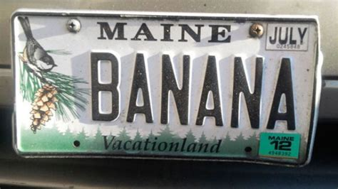 Maine Vanity Plate by Food Obsessed Vanity Plates Across America