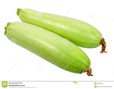 Green Zucchini T1310 2 two ripe green zucchini with flowers stock images image 20986264