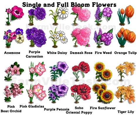 list of flowers bloom garden guide farmville task