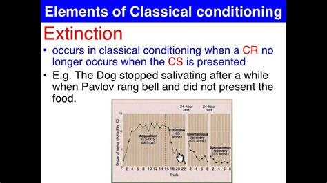 extinction amp spontaneous recovery classical conditioning