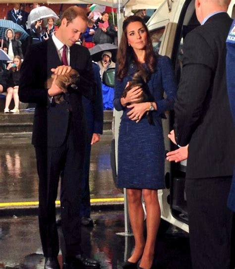 allthingsrarmitage blogspot com celebrity run in nz see royal visit prince william and kate middleton pay