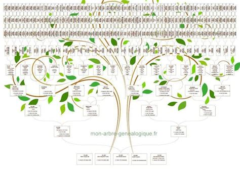 arbre genealogique image gallery l arbre genealogique