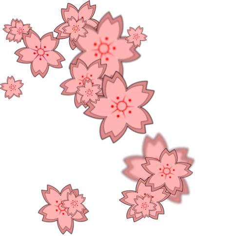 sakura petals download free images png 34557 free icons