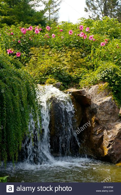 Botanical Gardens In Illinois Waterfall At The Chicago Botanic Garden In Glencoe Illinois Stock Photo Royalty Free Image