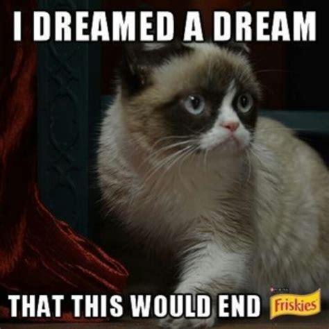 Miserable Cat Meme - grumpy cat les mis memes