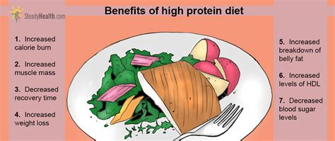 t protein low low carb high protein sugar foods foodfash co
