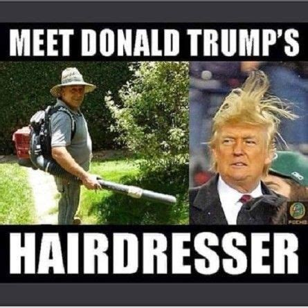 wore   donald trump google search funny