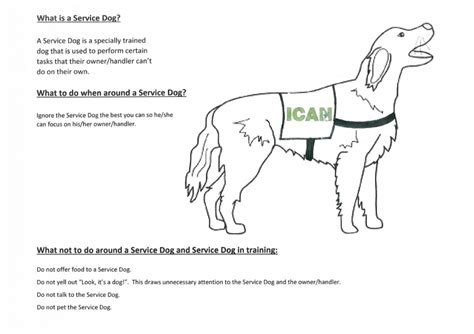 coloring pages of service dogs dog coloring pages make photo gallery color drawing book