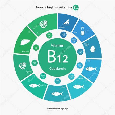 alimenti vitamina b12 alimentos ricos em vitamina b12 vetores de stock