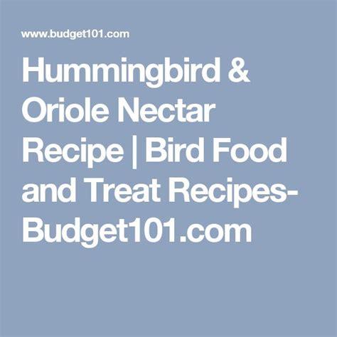 top 28 oriole nectar recipe recipe for oriole food