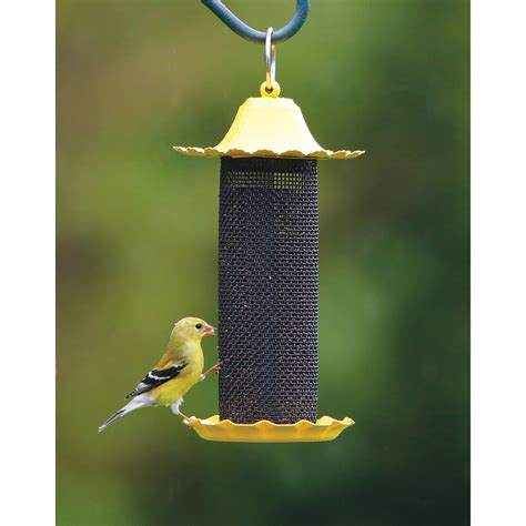 nyjer bird feeders bird cages