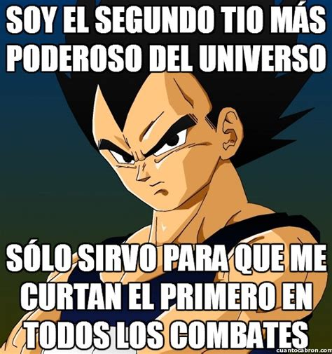 Memes De Vegeta - cu 225 nto cabr 243 n pobre vegeta