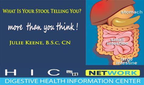 What Does Your Stool Tell You by Stool Testing Information