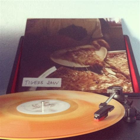 Cd Import Tigers Jaw Self Titled 1 120 best vinyl images on