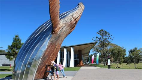 house melbourne cup hervey bay whale tours in hervey bay queensland travel travel news and deals herald sun