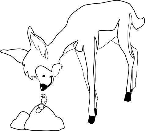 deer tracks coloring pages free coloring pages of browning deer logo