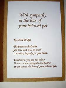 pet sympathy quotes paw prints quotesgram