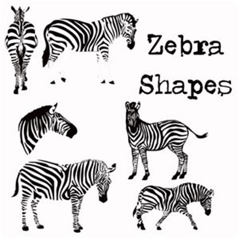 how to make zebra pattern in photoshop photoshop zebra pattern free patterns